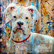 The Painter's Dog Art Print