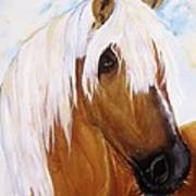 The Palomino Art Print