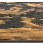 Harvest Hills Art Print by Latah Trail Foundation
