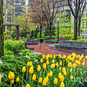 The Park At Post Office Square Art Print
