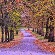The Park In Autumn Art Print