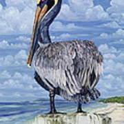 Pelican Perch Art Print