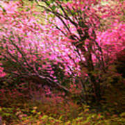 The Pink Forest Art Print