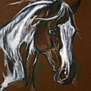 The Pinto Horse Art Print