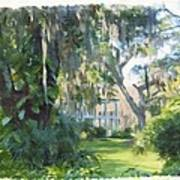 The Plantation Art Print