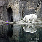The Polar Bear And The Purple Chair Art Print