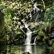The Pond And The Forest Waterfall Art Print