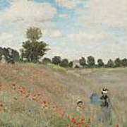 The Poppy Field Art Print