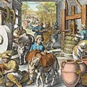 The Production Of Olive Oil, Plate 13 Art Print