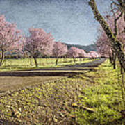 The Promise That Spring Makes Art Print