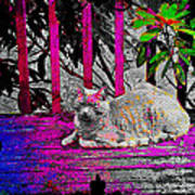 The Psychedelic Cat Art Print