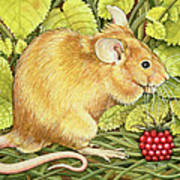 The Raspberry Mouse Art Print