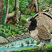 The Real Thunder Bird  Art Print