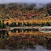 The Reflection Art Print