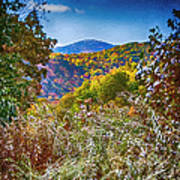 The Road To Cataloochee On A Frosty Fall Morning Art Print