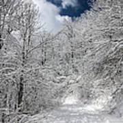 The Road To Winter Wonderland Art Print