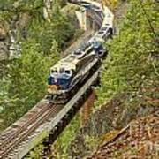 The Rocky Mountaineer Train Art Print