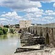 The Roman Bridge Of Cordoba  Art Print