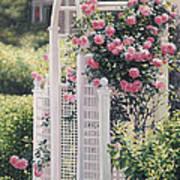 The Rose Arbor The Wauwinet Art Print