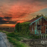 The Rustic Barn Art Print by Pete Reynolds
