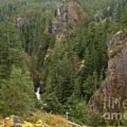 The Scenic Cheakamus River Gorge Art Print