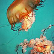 The Sea Ballet Art Print