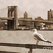 The Seagull Of The Brooklyn Bridge Vintage Look Art Print