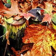 The Secret Of Fall Art Print