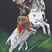 The Seminole Art Print