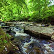 The Shankhill River Shortly Art Print