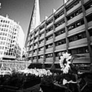 the shard building towering over melior street community garden London England UK Art Print