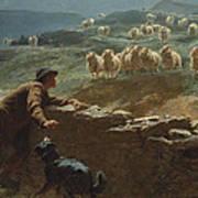 The Sheepstealer Art Print