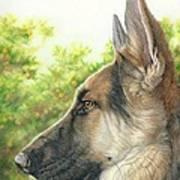 The Shepherd Watching Art Print