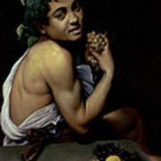 The Sick Bacchus, 1591  Art Print