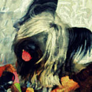 The Skye  Terrier Tilt   Art Print