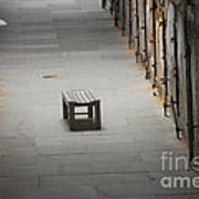 The Solitary Seat Art Print