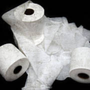 The Spare Rolls 3 - Toilet Paper - Bathroom Design - Restroom - Powder Room Art Print