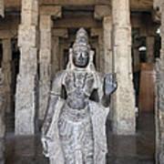 The Sri Meenakshi Temple Art Print