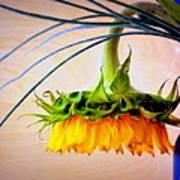 The Sunflower Speaks Art Print