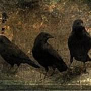 The Three Black Crows Art Print