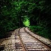 The Tracks Through The Woods Art Print