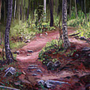The Trail Series - Sunlight In The Wood Art Print