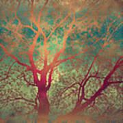 The Tree Called Beautiful Art Print