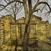 The Tree House 2 Art Print