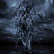 The Tree Of Sawols Cyanotype Art Print