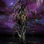 The Tree Of Sawols Art Print by John Edwards