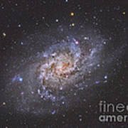 The Triangulum Galaxy Art Print by Reinhold Wittich