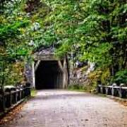 The Tunnel On The Scenic Route Art Print