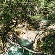 The Turquoise Waters Of The Forest River No2 Art Print