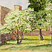 The University Of The South Campus Art Print